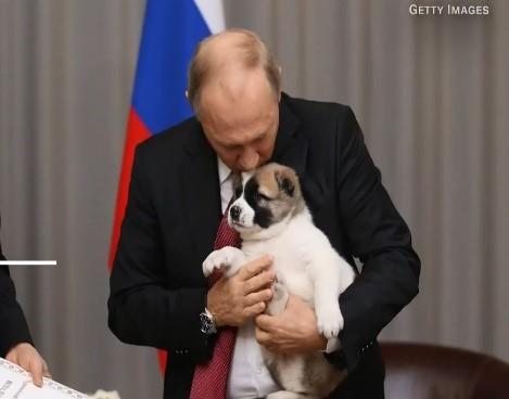 Vladimir Putin Pet Az